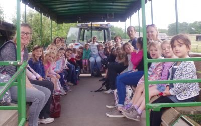 Reception trip to Bocketts farm